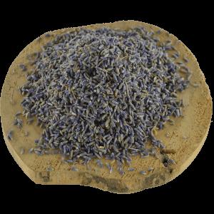 Lavendel | Megro Kruiden